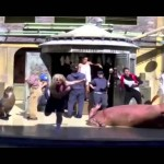Elephant Man – Harlem Shake (Official Music Video)