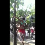 (LOL) UWI Carnival 2012 – Whining In The Tree