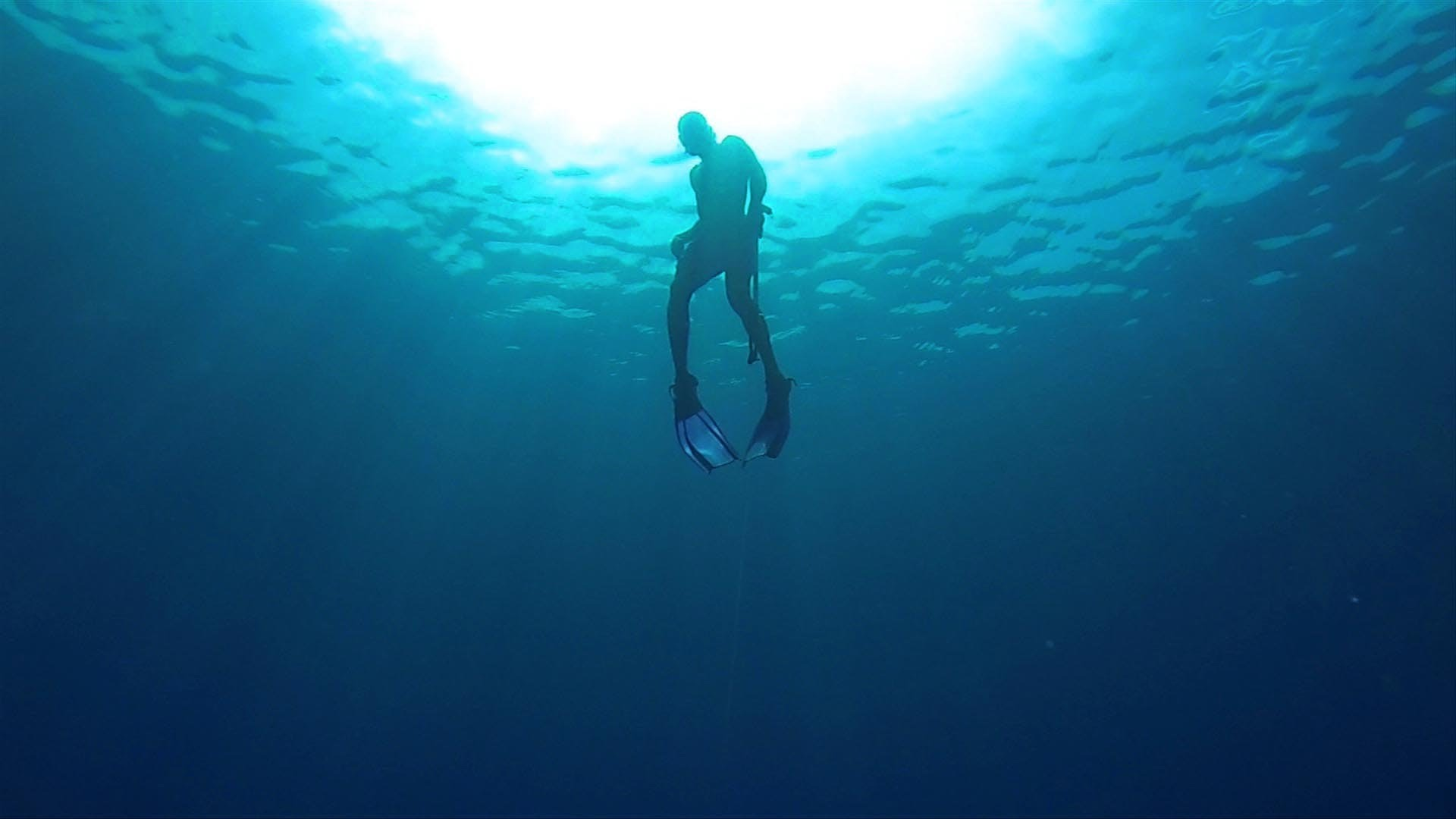 Diving Deeper Taster – The story of the Jamaican spearfishermen