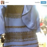 Fact: The Dress is Blue and Black