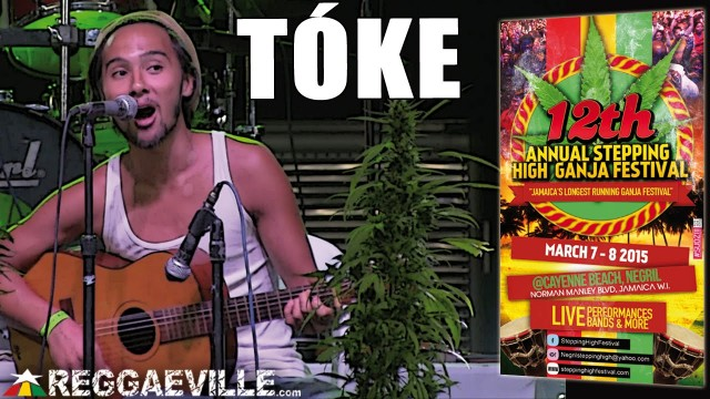 Tóke @ Stepping High Ganja Festival 2015 [March 7-8th 2015]